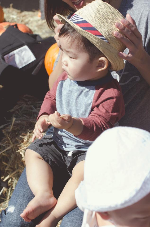 Fall Festival Edits-30
