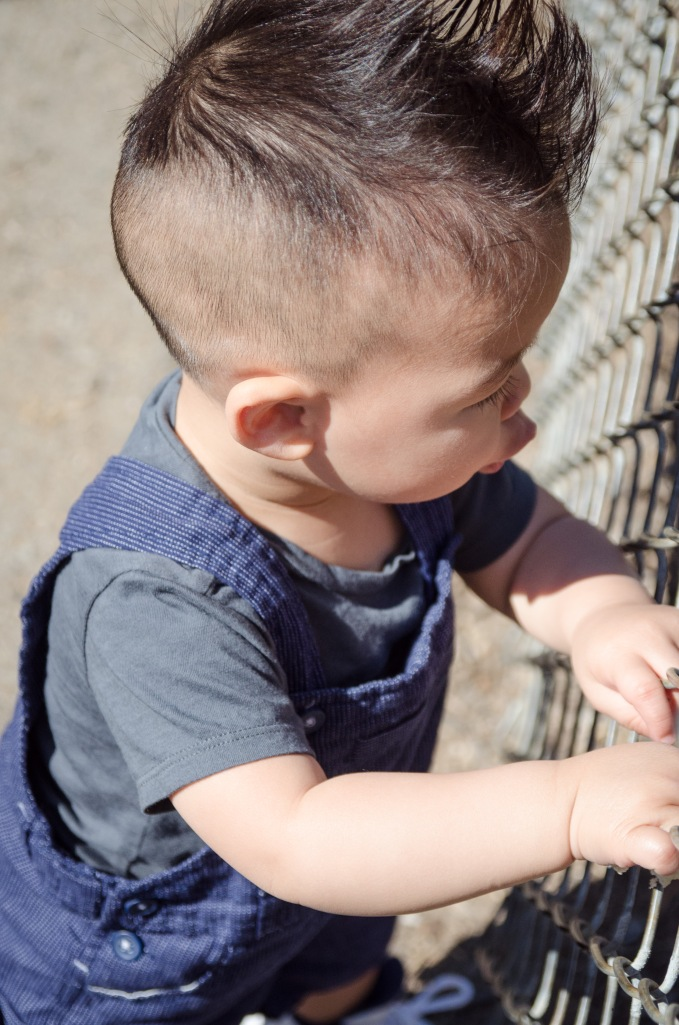 Oakland Zoo-13