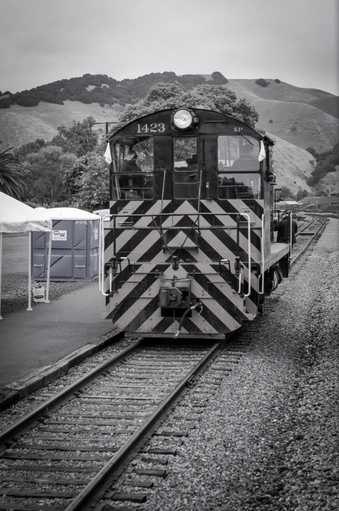 Sunol Train-50