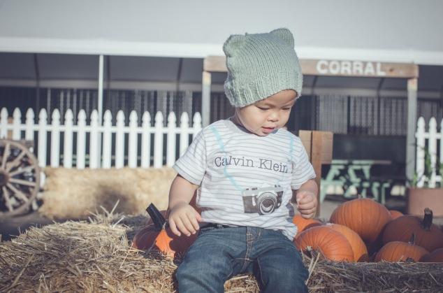 Pumpkin Patch '15-17