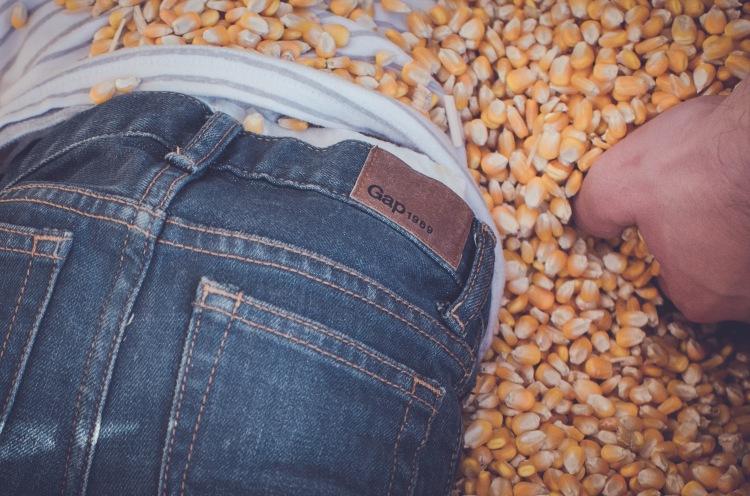 Pumpkin Patch '15-36