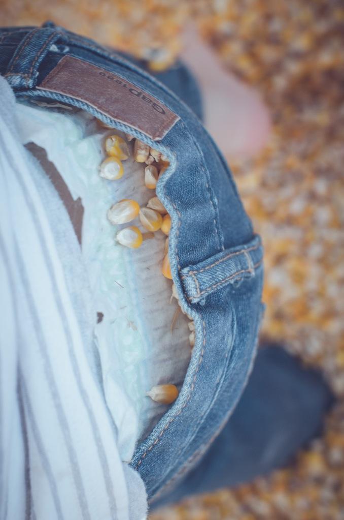 Pumpkin Patch '15-43
