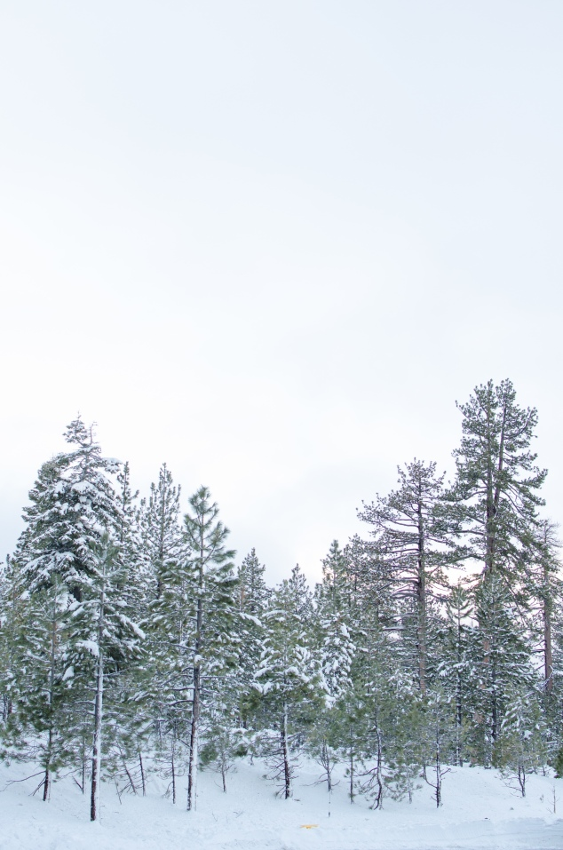 tahoe-17-32