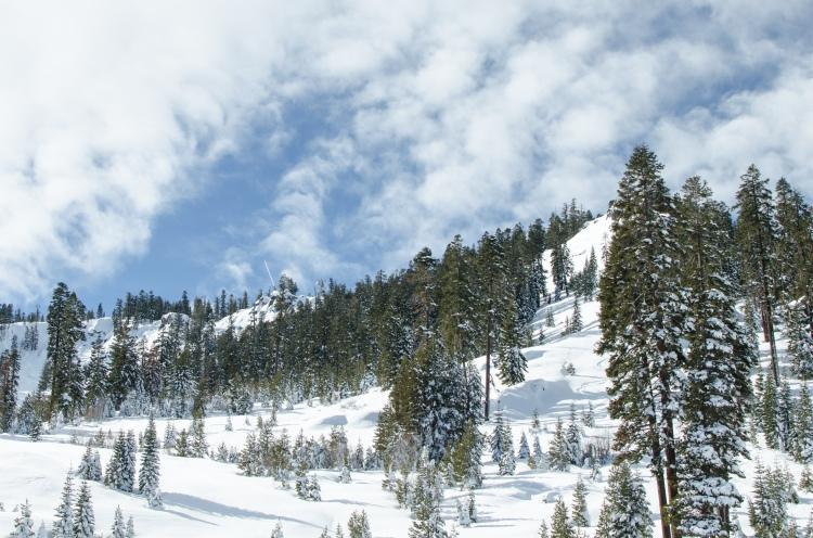 tahoe-17-83