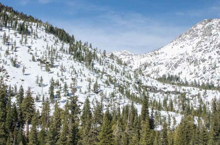 Tahoe 3.12 Favs-1